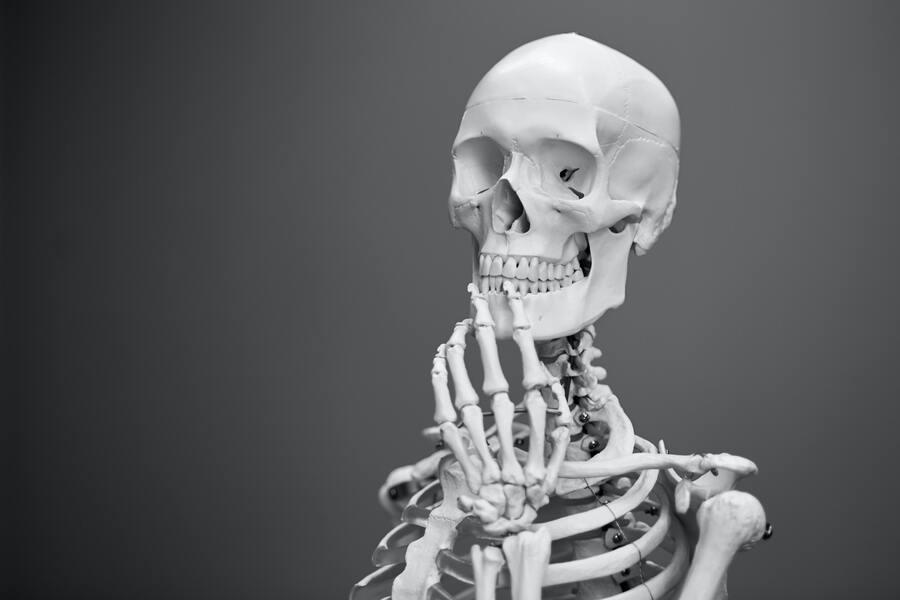 esqueleto pensando generar leads